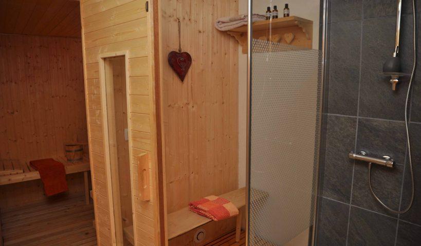 Sauna et douche